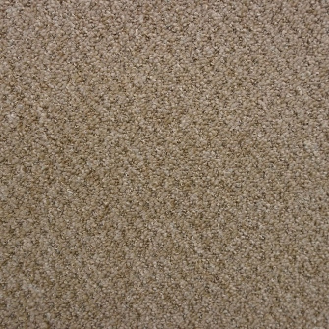Goldfields by Balta Broadloom