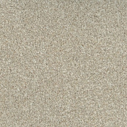 Trident Highlights by Regency Carpets Alabaster 558