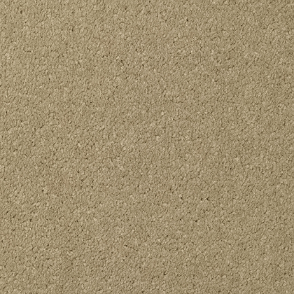 Cabaret by Regency Carpets Cafe Au Lait 457