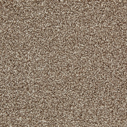 Remarkable Gold by Kingsmead Carpets Cappucino