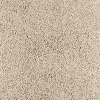 Carefree Tones by Fells Carpets Ash