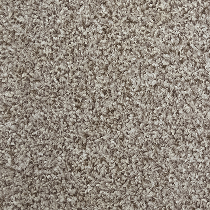 Fairway by Regency Carpets 232 Grouse