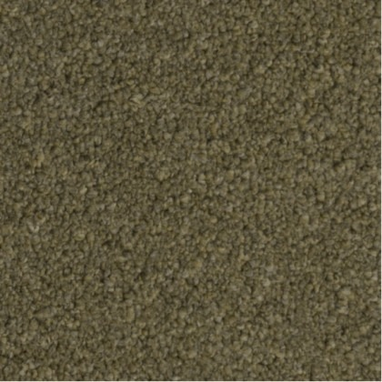 First Impressions by Victoria Carpets Be Yourself