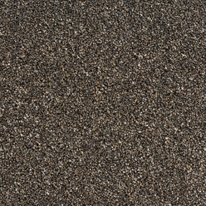 Intenza Excellence Supreme by Condor Carpets Bark 79