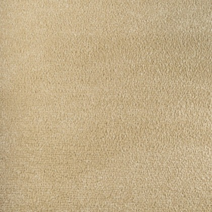 Jubilant Soft Touch by Fells Carpets Blonde