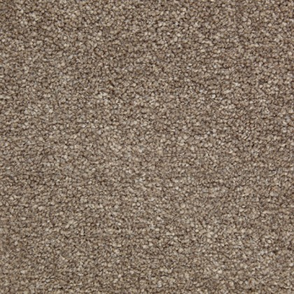 New Majesty Silver by Kingsmead Carpets Loam