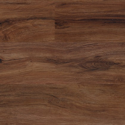 North American Walnut