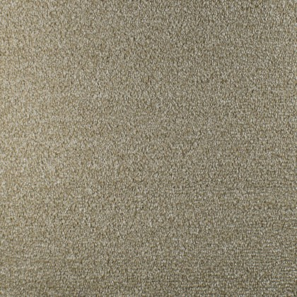 Prime Time Elite by Fells Carpet Beige