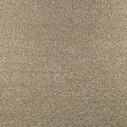 Prime Time Elite Super Soft by Fells Carpets Brownberry