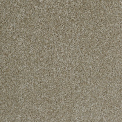 Saxon King by Balta Broadloom 665