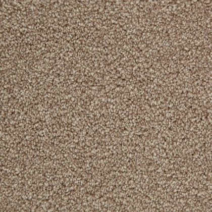 Superb Gold by Kingsmead Carpets Champagne
