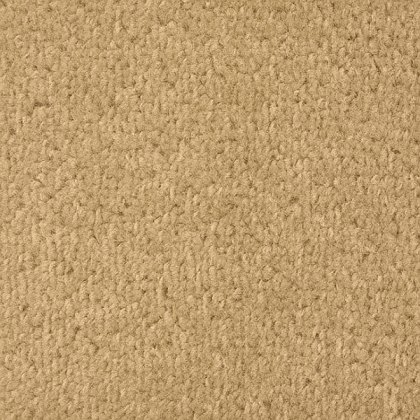 Vantage by Regency Carpets Berber