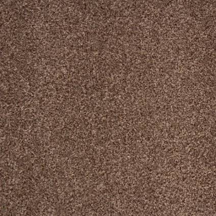 Liberty 15 by Betap Tufting Carpets Camel 90