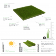 Wonderlust Lizard Oryzon Artificial Grass