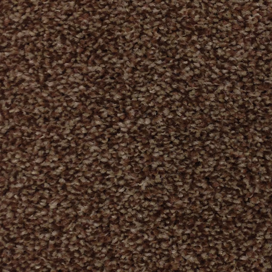 Florence Carpet Carpet Monster Carpets Amp Floors Online