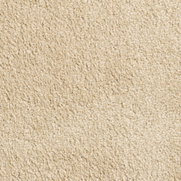Intenza Superior Supreme Carpet Condor Carperts