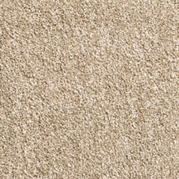 Intenza Essentials Supreme Carpet Condor Carpets